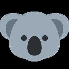 Jasper profile picture
